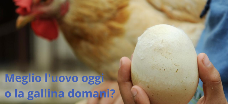 Meglio gallina oggi o uovo domani